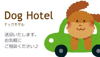 ペットホテル・ペット宿泊